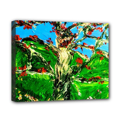 Coral Tree 2 Canvas 10  X 8