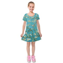 Almond Blossom  Kids  Short Sleeve Velvet Dress
