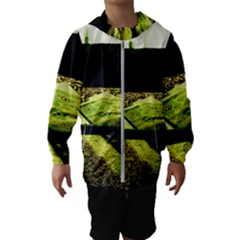Colors And Fabrics 25 Hooded Wind Breaker (kids)