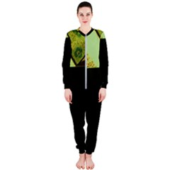 Colors And Fabrics 24 Onepiece Jumpsuit (ladies)