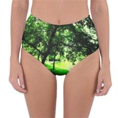 Lake Park 17 Reversible High Waist Bikini Bottoms