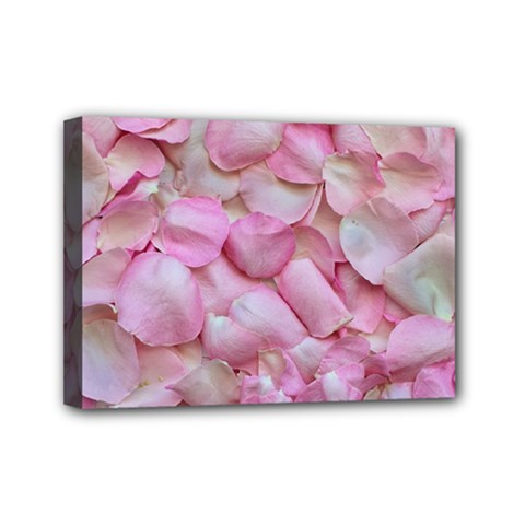 Romantic Pink Rose Petals Floral  Mini Canvas 7  X 5