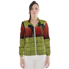Pumpkins 10 Wind Breaker (women)