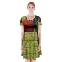 Pumpkins 10 Short Sleeve V Neck Flare Dress