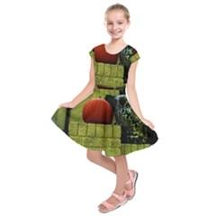 Pumpkins 10 Kids  Short Sleeve Dress