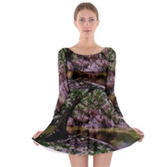 Old Tree 6 Long Sleeve Skater Dress