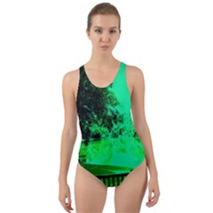 Lake Park 20 Cut Out Back One Piece Swimsuit