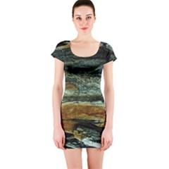Tree In Highland Park Short Sleeve Bodycon Dress
