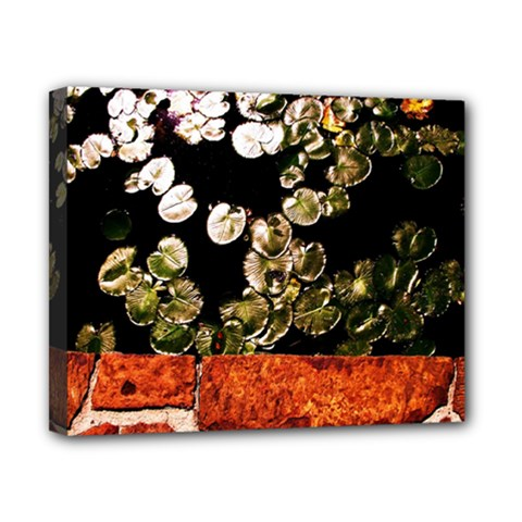 Highland Park 4 Canvas 10  X 8  by bestdesignintheworld