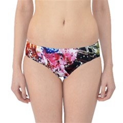 Smashed Butterfly 5 Hipster Bikini Bottoms