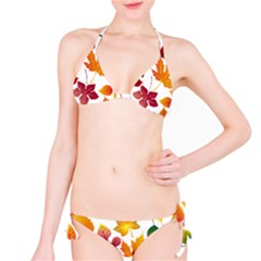 Beautiful Autumn Leaves Vector Bikini Set