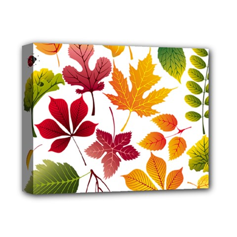 Beautiful Autumn Leaves Vector Deluxe Canvas 14  X 11