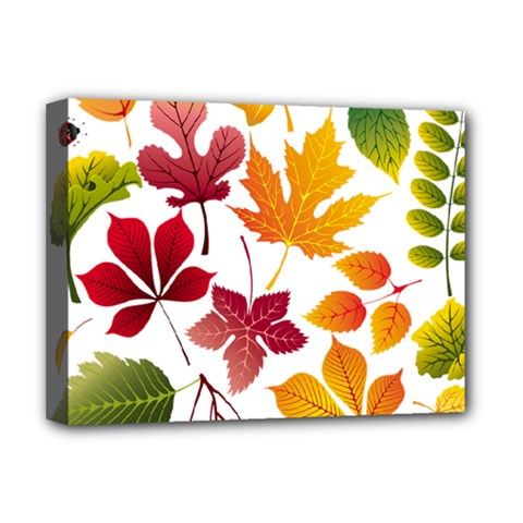 Beautiful Autumn Leaves Vector Deluxe Canvas 16  X 12