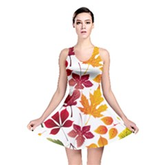 Beautiful Autumn Leaves Vector Reversible Skater Dress