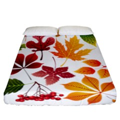 Beautiful Autumn Leaves Vector Fitted Sheet (california King Size)