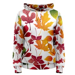 Beautiful Autumn Leaves Vector Women s Pullover Hoodie