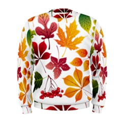 Beautiful Autumn Leaves Vector Men s Sweatshirt