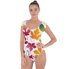 Beautiful Autumn Leaves Vector Short Sleeve Leotard