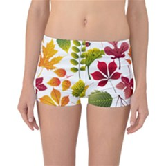 Beautiful Autumn Leaves Vector Reversible Boyleg Bikini Bottoms