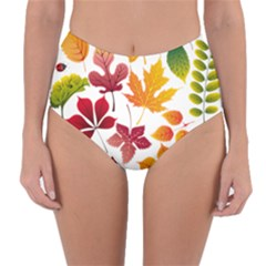 Beautiful Autumn Leaves Vector Reversible High Waist Bikini Bottoms
