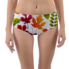 Beautiful Autumn Leaves Vector Reversible Mid Waist Bikini Bottoms