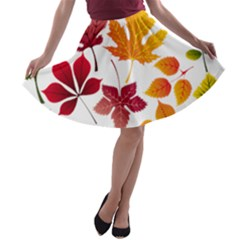 Beautiful Autumn Leaves Vector A Line Skater Skirt