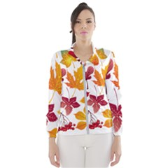 Beautiful Autumn Leaves Vector Wind Breaker (women)