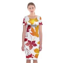 Beautiful Autumn Leaves Vector Classic Short Sleeve Midi Dress