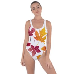 Beautiful Autumn Leaves Vector Bring Sexy Back Swimsuit