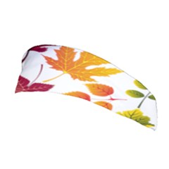 Beautiful Autumn Leaves Vector Stretchable Headband
