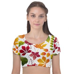 Beautiful Autumn Leaves Vector Velvet Short Sleeve Crop Top