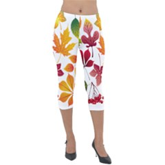 Beautiful Autumn Leaves Vector Lightweight Velour Capri Leggings