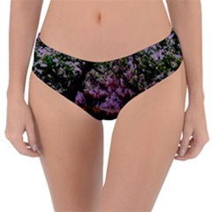 Old Tree 6 Reversible Classic Bikini Bottoms by bestdesignintheworld