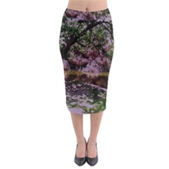 Old Tree 6 Midi Pencil Skirt by bestdesignintheworld