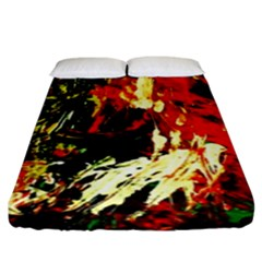 Sunset In A Desert Of Mexico 1 Fitted Sheet (king Size)