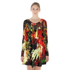Sunset In A Desert Of Mexico 1 Long Sleeve Velvet V Neck Dress