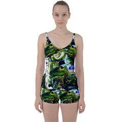 Bow Of Scorpio Before A Butterfly 8 Tie Front Two Piece Tankini