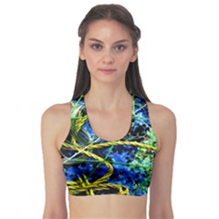 Moment Of The Haos 7 Sports Bra