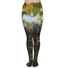 Highland Park 10 Women s Tights