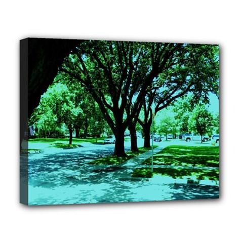 Hot Day In Dallas 5 Deluxe Canvas 20  X 16