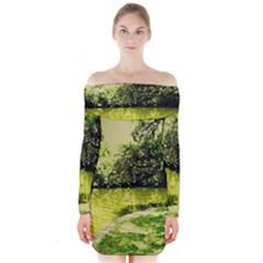 Lake Park 9 Long Sleeve Off Shoulder Dress