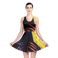 Cryptography Of The Planet 2 Reversible Skater Dress