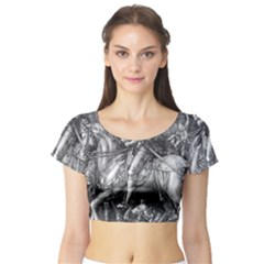 Death And The Devil   Albrecht D¨1rer Short Sleeve Crop Top