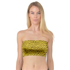 Sunflower Head (helianthus Annuus) Hungary Felsotold Bandeau Top