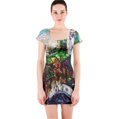 Gatchina Park 4 Short Sleeve Bodycon Dress