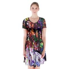 Gatchina Park 2 Short Sleeve V Neck Flare Dress