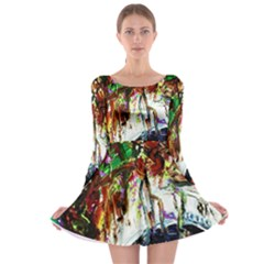 Gatchina Park 1 Long Sleeve Skater Dress
