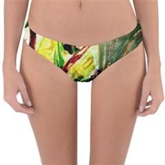 House Will Be Buit 4 Reversible Hipster Bikini Bottoms by bestdesignintheworld
