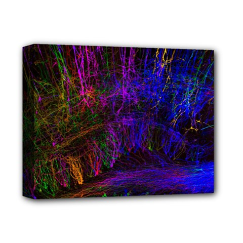 Color Splash Trail Deluxe Canvas 14  X 11