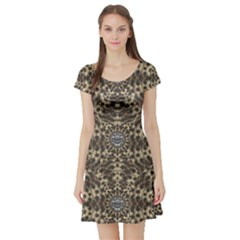 I Am Big Cat With Sweet Catpaws Decorative Short Sleeve Skater Dress
